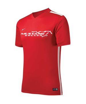 NIKE CHALLENGE JERSEY RED M/B Image