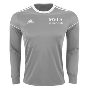 SQUADRA 17 JERSEY LONG SLEEVE GREY Image